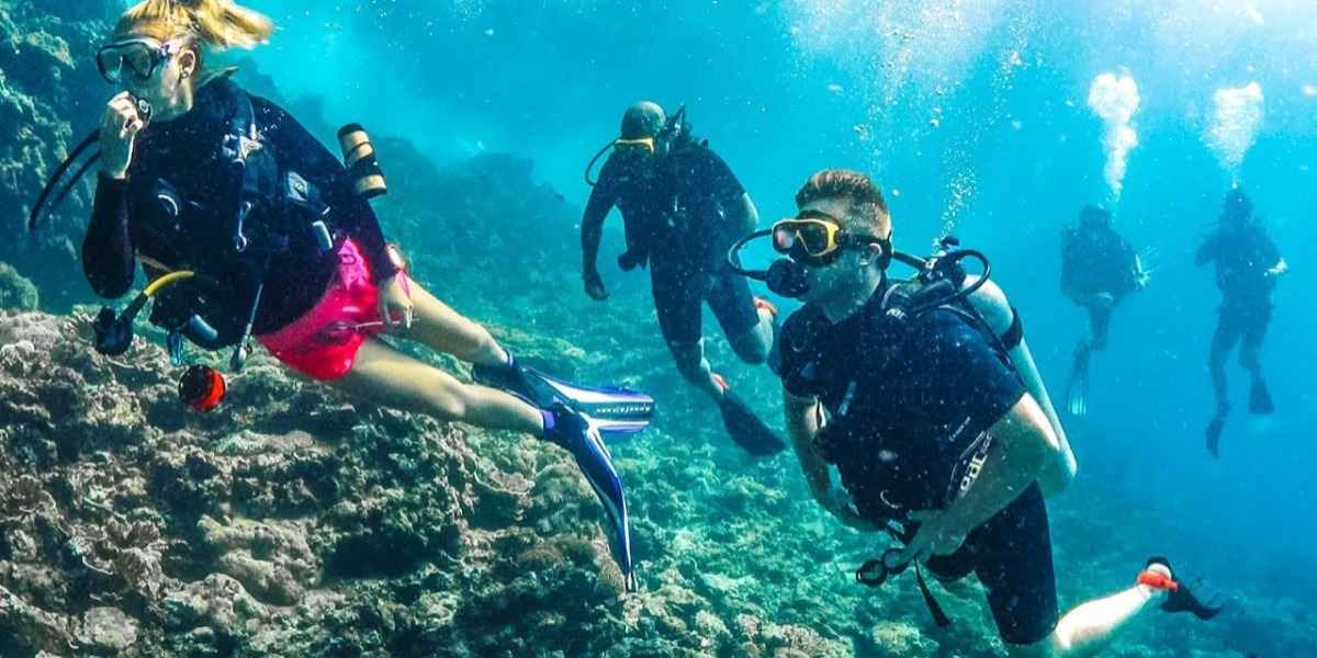 Scuba Diving West Coast
