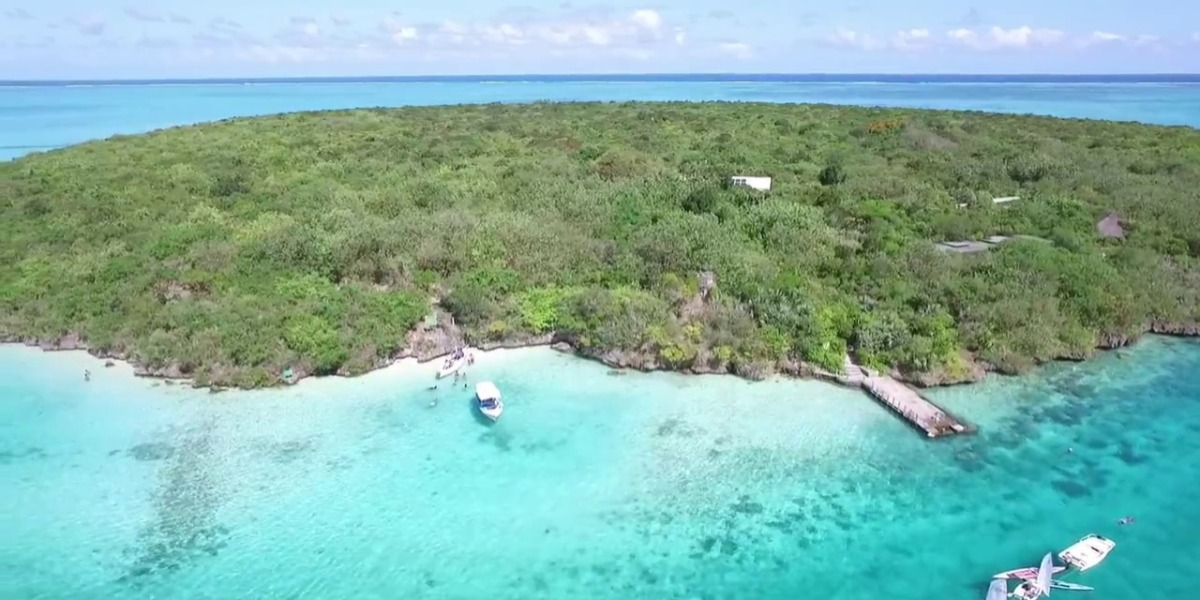 Ile aux Aigrettes & The Mauritian Wildlife Foundation