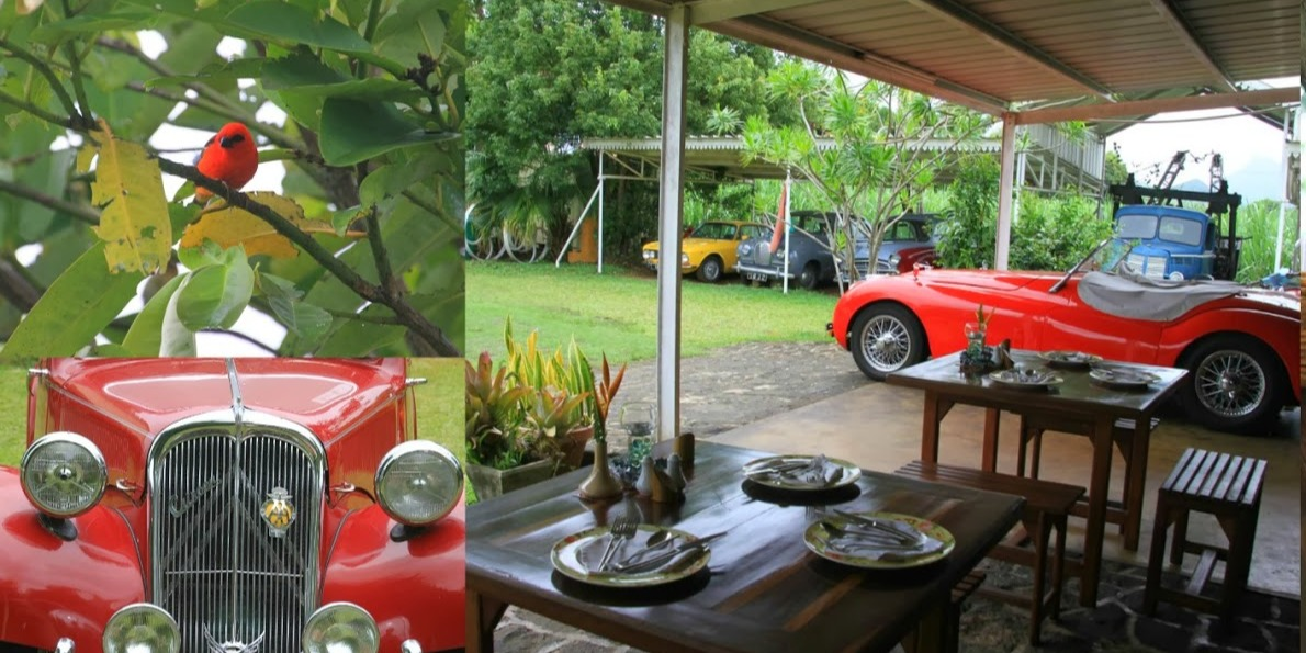 Vintage Cars collection at Tante Athelie