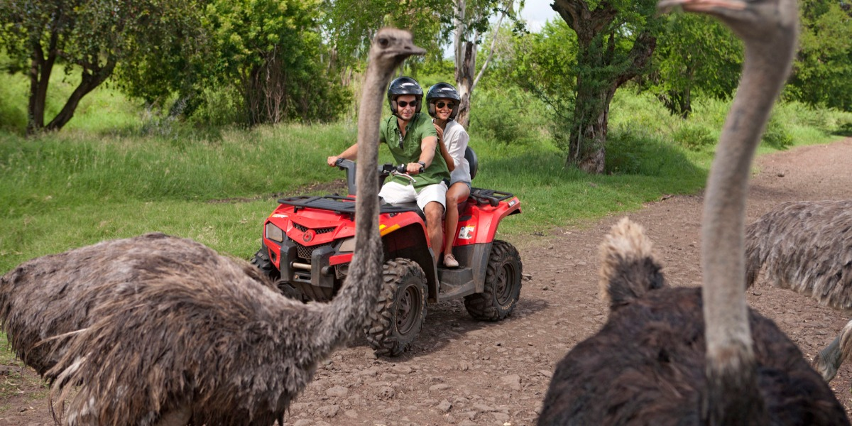 Quad Biking Safari